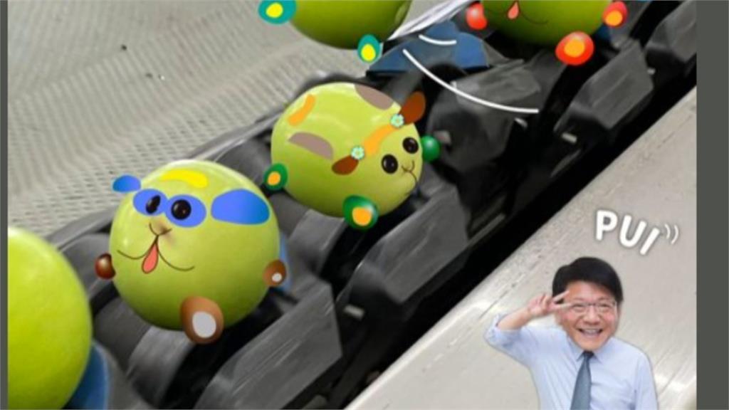 政壇吹療癒風? 林智堅挑戰DIY「天竺鼠車車」