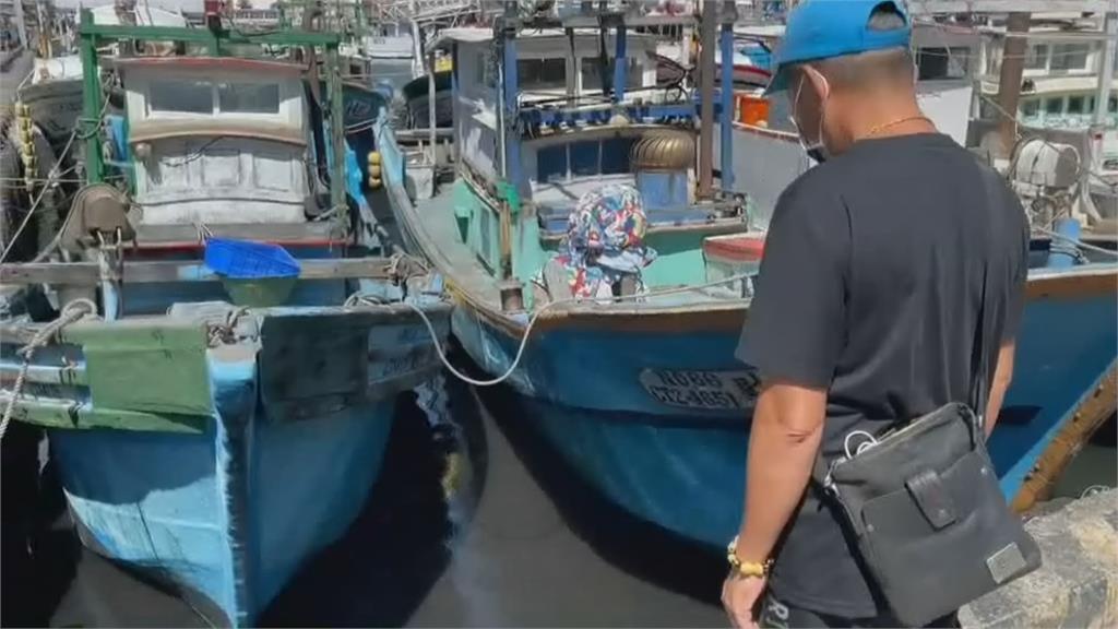 驚奇! 南方澳漁港驚見青鱗仔魚群聚 農業處:天氣熱遇上大潮