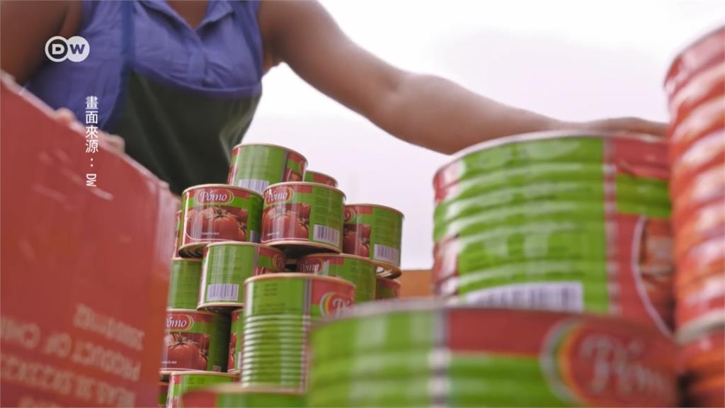 全球/「餐桌上的紅金風暴」 番茄醬全都中國製?