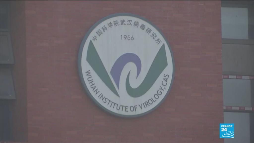 澳洲媒體獨家影片 證實武漢病毒研究所養蝙蝠!中國「蝙蝠女」怒了 自稱不斷遭潑髒水