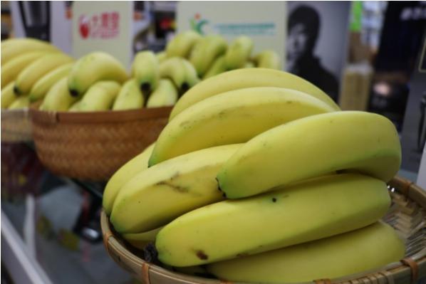 專屬香蕉的保險!去年理賠233% 「香蕉收入保險」延長販售至5/14