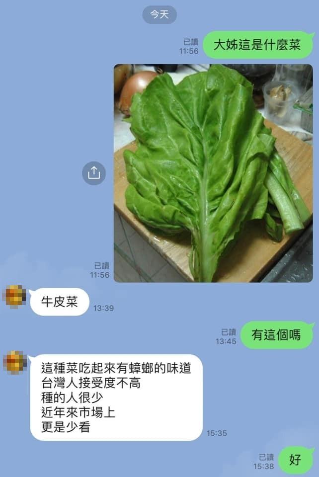這青菜台灣超罕見!大姐喊「有蟑螂味」老饕秒認出:明明是極品