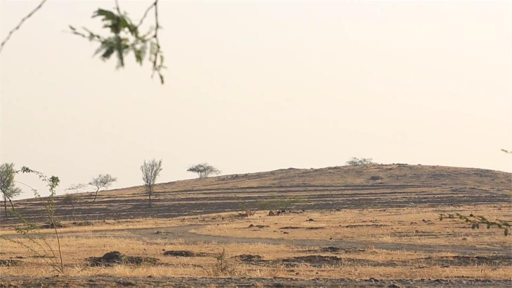全球/逼政府撤農改法案 印度農民衝「紅堡」抗議!