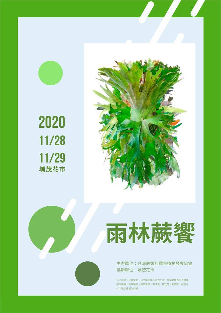 過年市集逛起來!2021觀葉植物展覽總整理