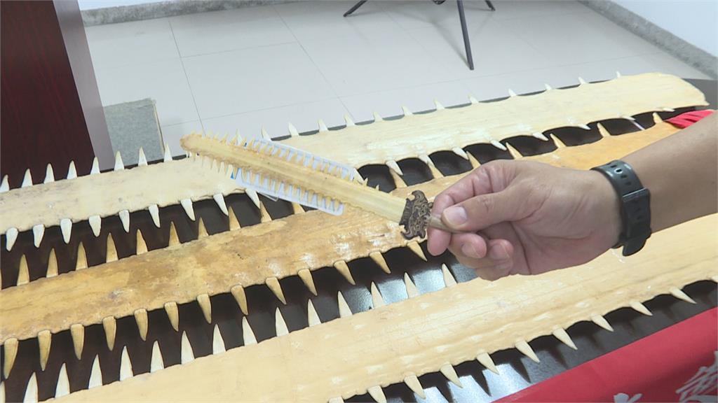 史上最大宗! 海巡查獲170支鯊魚劍  一支叫價百萬 還有罕見獨角鯨牙!