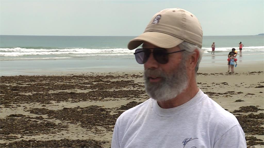 緬因州海灘蟲屍體髒汙 馬爾馬拉海「海鼻涕」