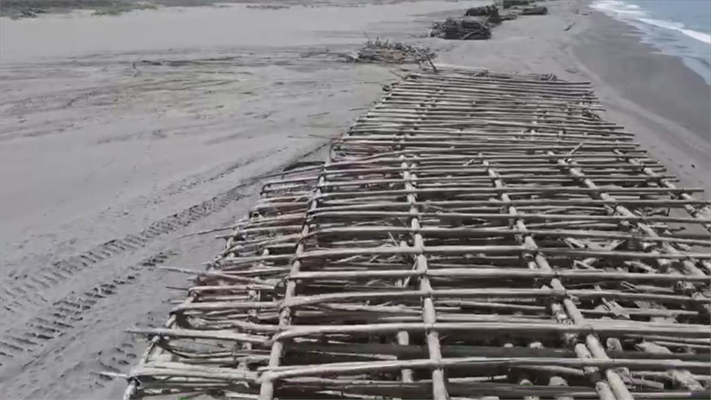 雨水少導致牡蠣空包彈多  蚵農叫苦連天
