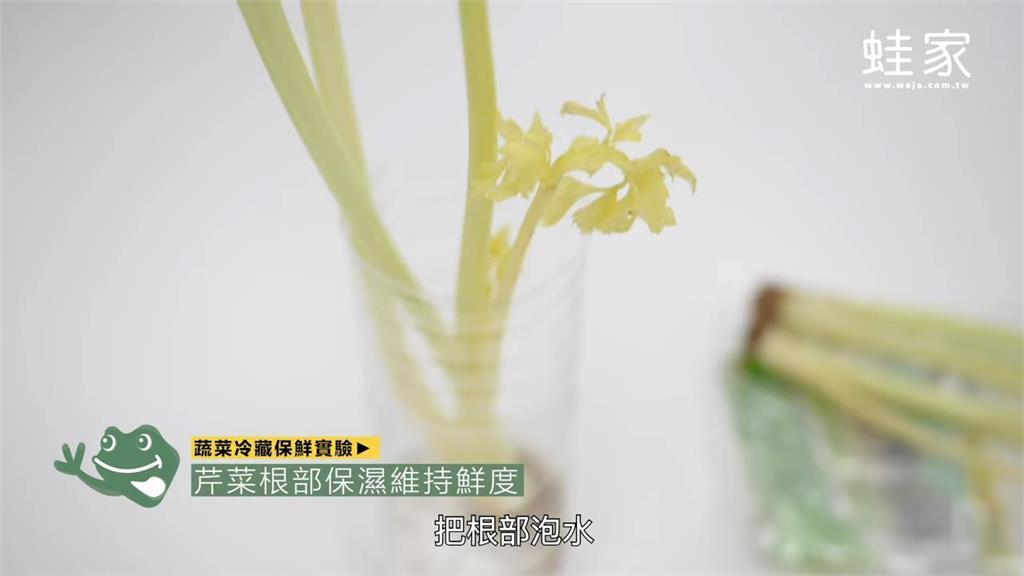 網實測青菜保存5大招 結果揭曉:九層塔加水竟可常綠7天
