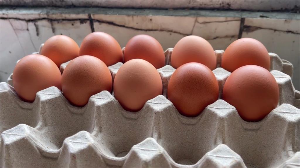 2500顆愛心蛋遭棄單「馬上被搶購」劉一峰神父:台灣人讚讚讚