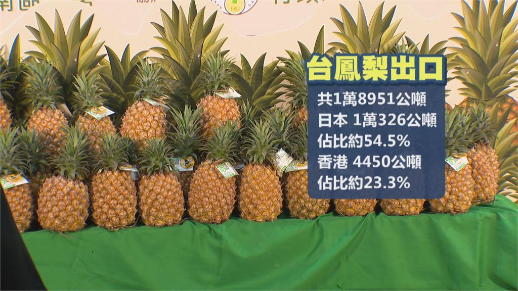 台灣鳳梨盛產了! 國外訂單滿滿 內銷也要拚