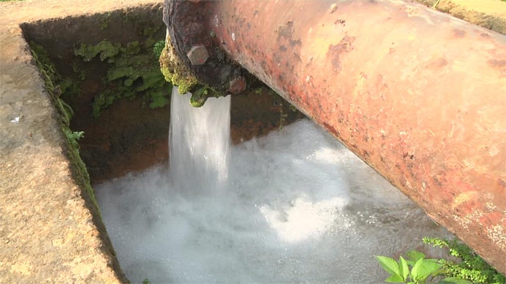 缺水荔枝樹開花茂盛! 恐影響結果率 農民抽取溪水、人工運水灌溉!