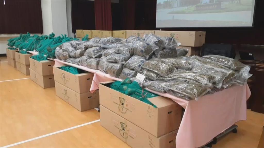 史上最多!嘉義檢警查獲2千多株大麻市價近10億 逮捕13名嫌犯